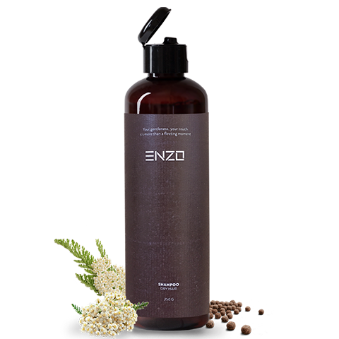 enzo-dry-hair-sampoo-figaro-salonas