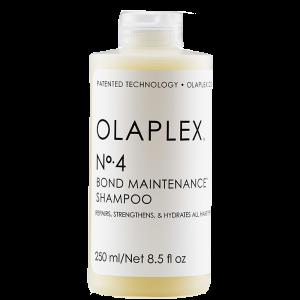 Atstatomasis plaukų šampūnas